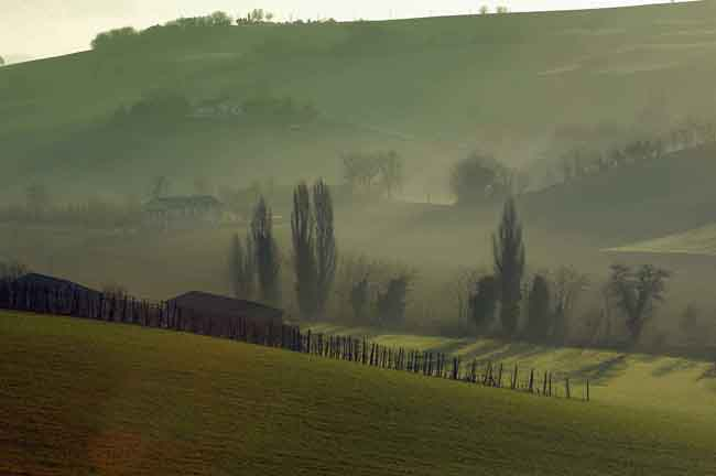 campagna fuori Osimo