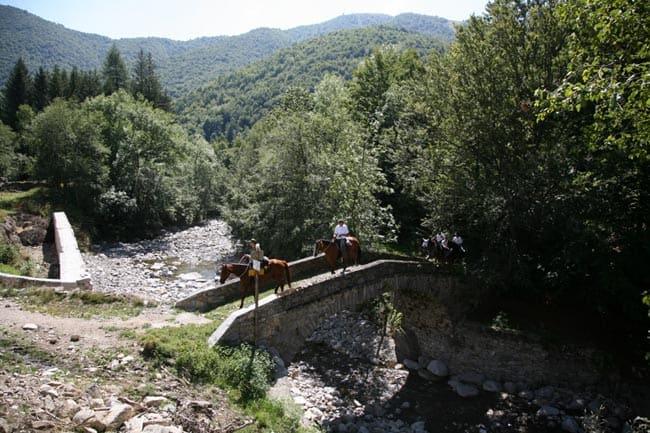 ponte sull'Elvo