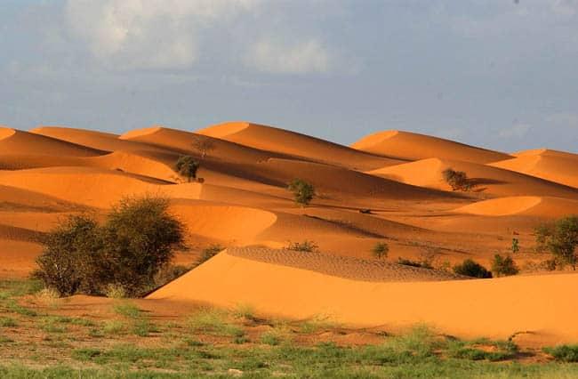 La sabbia dell'Africa offre tonalità di colore che Caprotti sfrutta per i suoi quadri materici