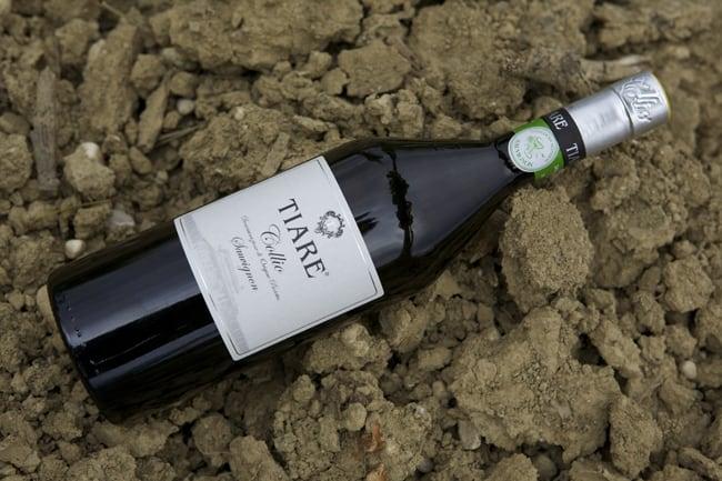Il miglior Sauvignon del mondo è Made in Friuli
