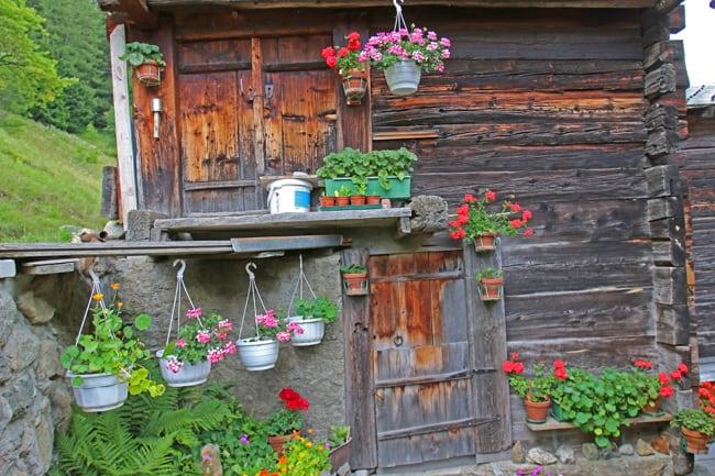Le case in legno sono costruite nel classico stile vallese