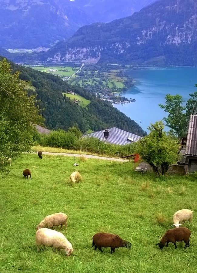 Canton Bernese, lago di Brienz