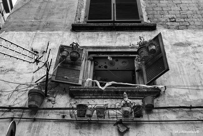 Napule è. Foto Fabrizio Ielmini®