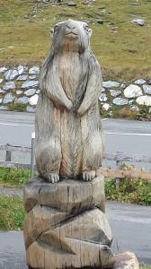 15 Scultura marmotta in legno