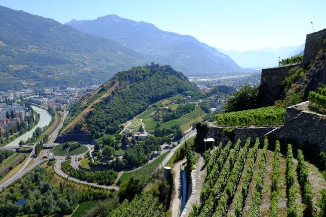 Vini del Vallese: l'oro segreto della Svizzera
