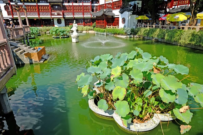 Shanghai la citt che ha in pugno il mondo - Il giardino di giada ...
