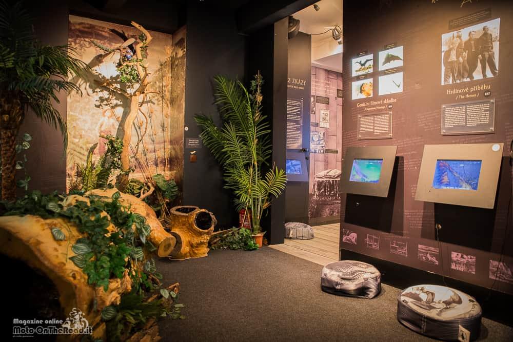 Interni del museo