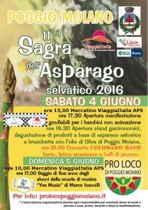 Sagra asparago copia