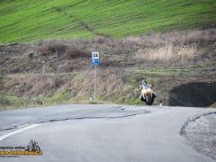DucatiMultistrada950-1