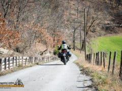 DucatiMultistrada950-19