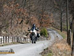 DucatiMultistrada950-21