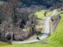DucatiMultistrada950-22