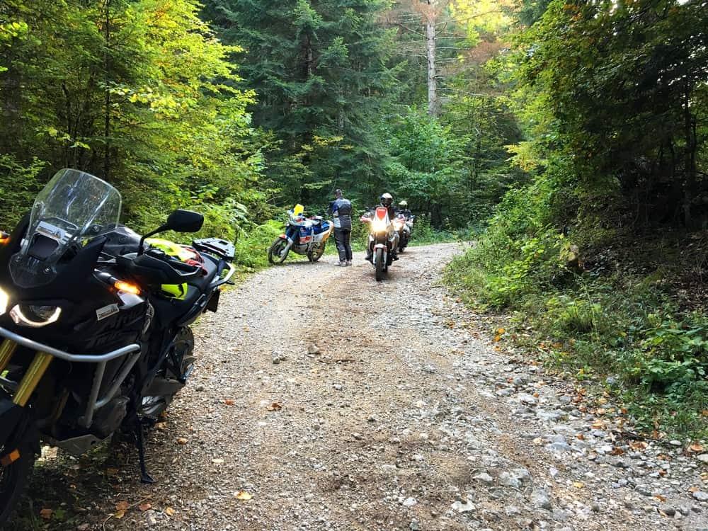 Il percorso prosegue nelle foreste